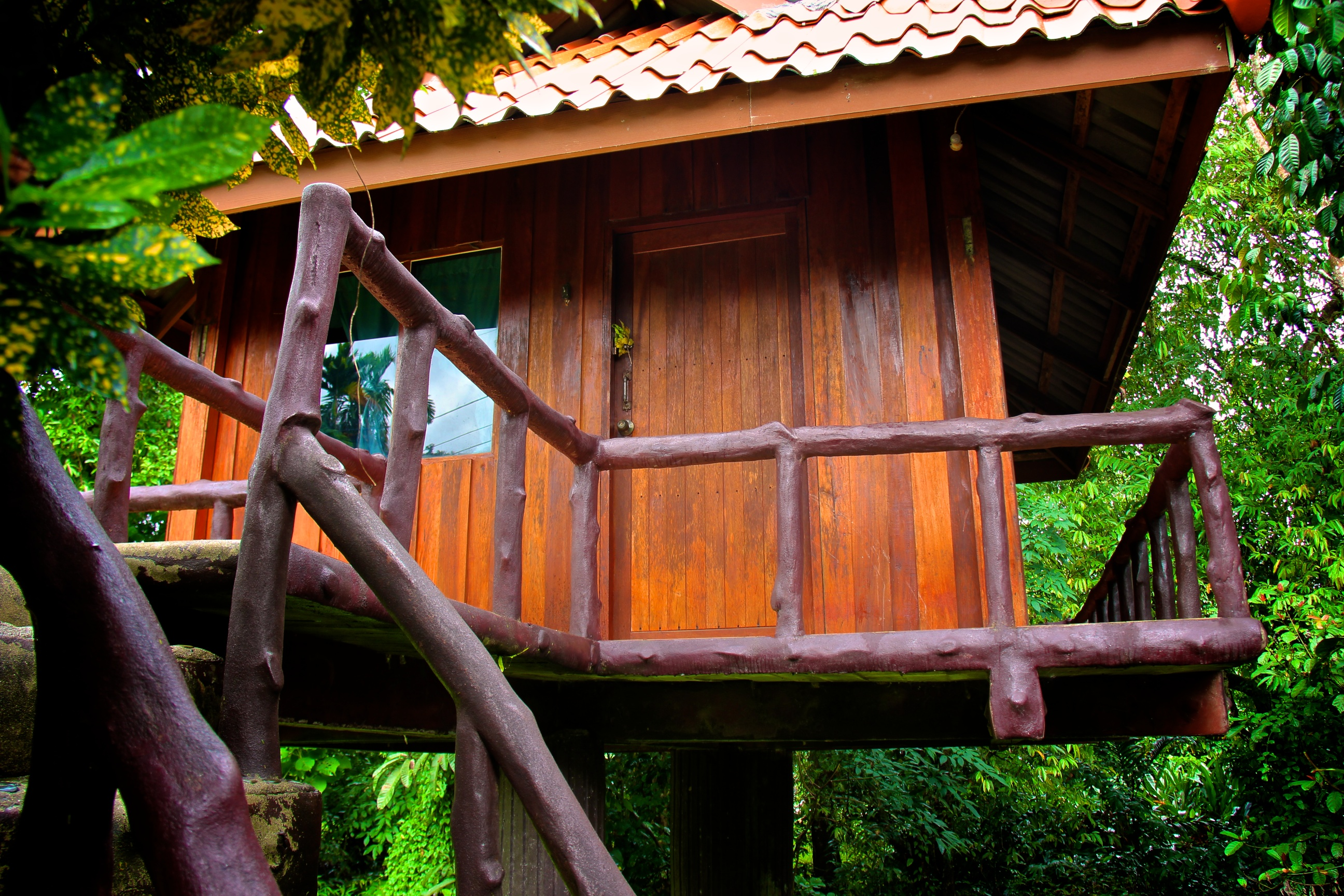 treehouse (2)